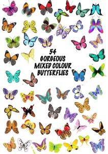 Reispapier Schmetterlinge