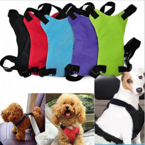 Hundesicherheitsgurt mit Brustpolster